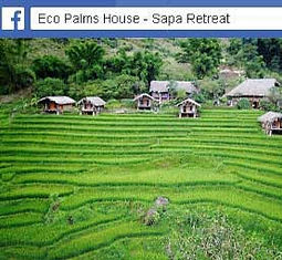 eco-palms-house-facebook.jpg