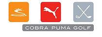 Cobra Puma.jpeg