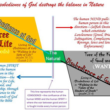 Disobedience of God destroys the balance in nature!