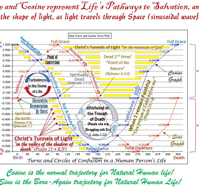 Sine and Cosine are Pathways of the Human Natural Life!