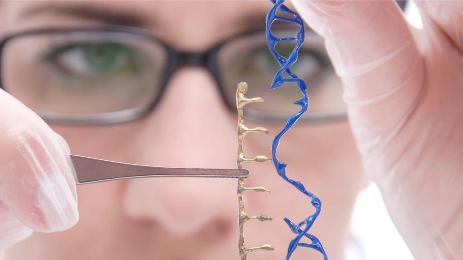 科学与哲学的对话: CRISPR & Biodigital Desire