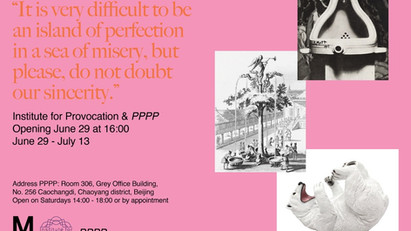 IFP New Exhibition | Simon Wald-Lasowski: It is very difficult to be an island of perfection in a s
