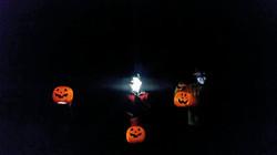 Pumpkin faces 1