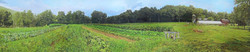 Marble Valley Farm