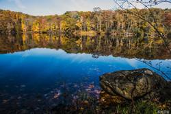 Beeman Pond credit John Wenceslao Oct 2012