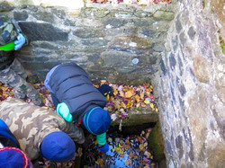 Investigation along the Heritage Trail 2 - Tobin Preserve Oct 2015 MCherniske