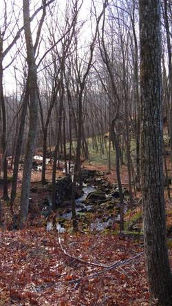 OptOutside Hike at EKHNP 11-27-15 - the view downstream credit MSimmons