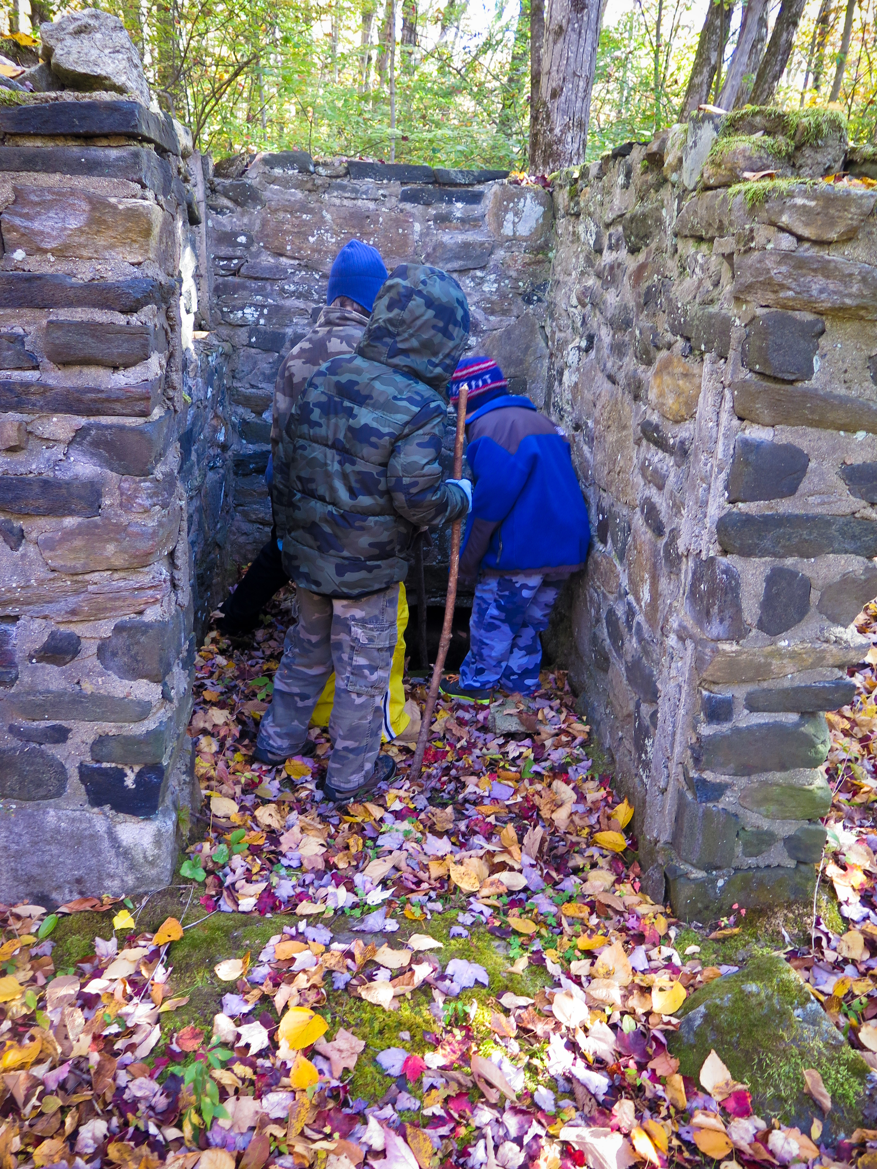 Investigation along the Heritage Trail - Tobin Preserve Oct 2015 MCherniske