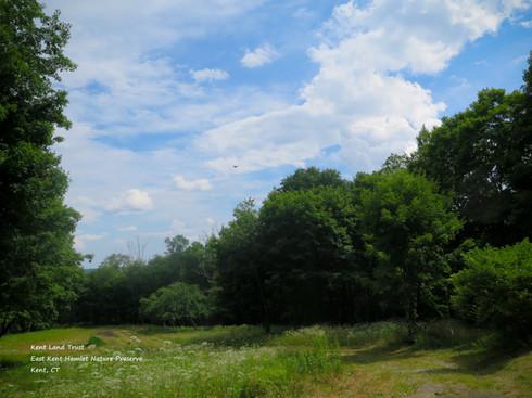 Kent Land Trust - East Kent Hamlet Natur
