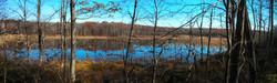 Camp Francis wetlands Dec 19, 2013 G Hock photo