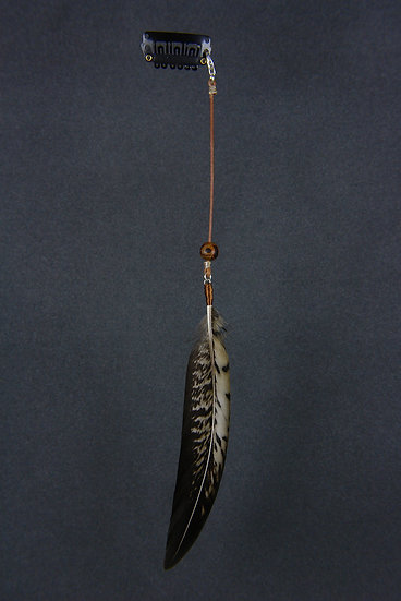 Bijou cheveux black tail chrysolophus amherstidae