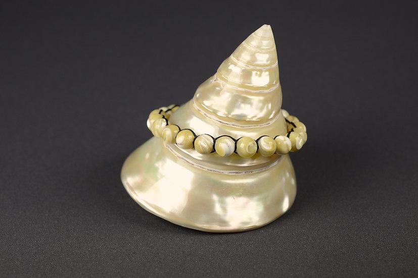 Bracelet de perles de nacre de trochus