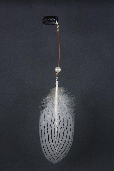Bijou de cheveux Lophura nycthemera