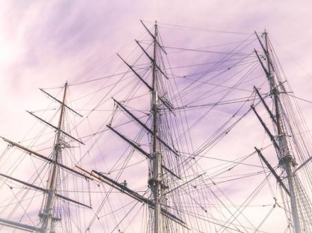 Mayflower Genealogy, Did your Ancestors Sail on the Mayflower?