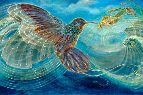 Colibri on Canvas