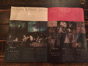VISUAL SONIC 2016