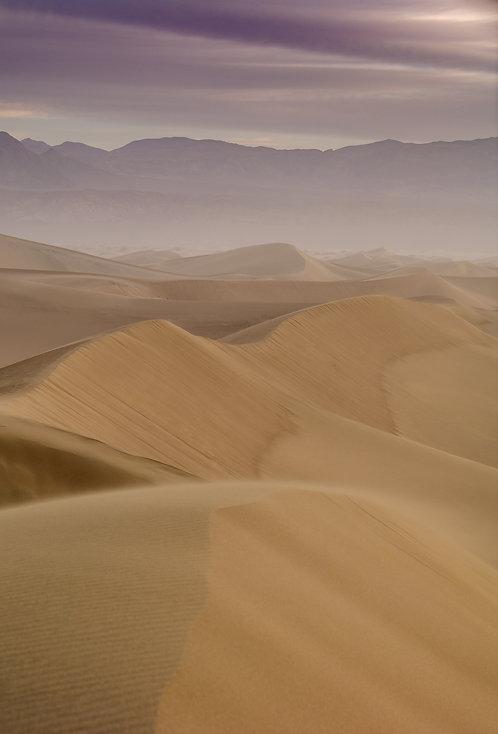 Mesquite Sand Dunes 7