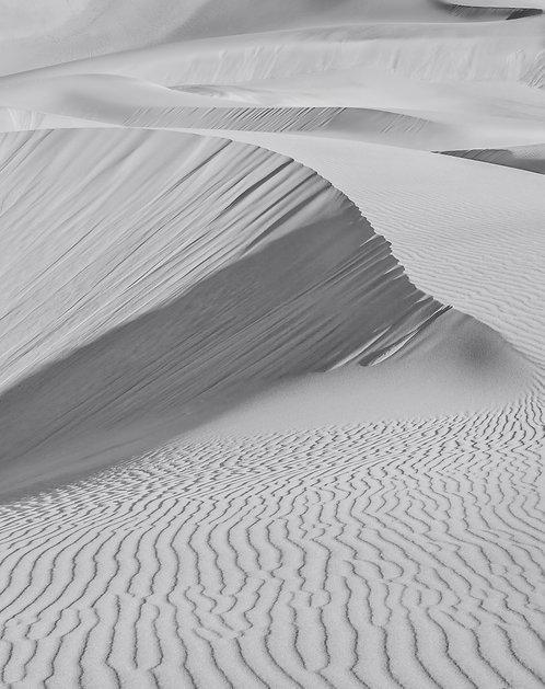 Mesquite Sand Dunes 16