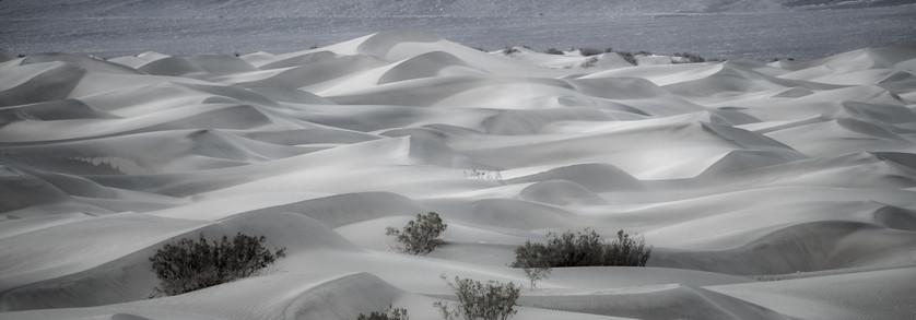 Sand Dunes 15