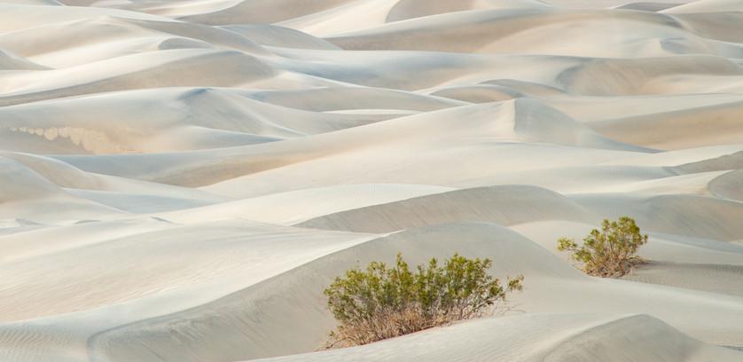 Sand Dunes 10