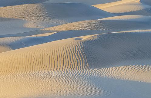 Mesquite Sand Dunes 11
