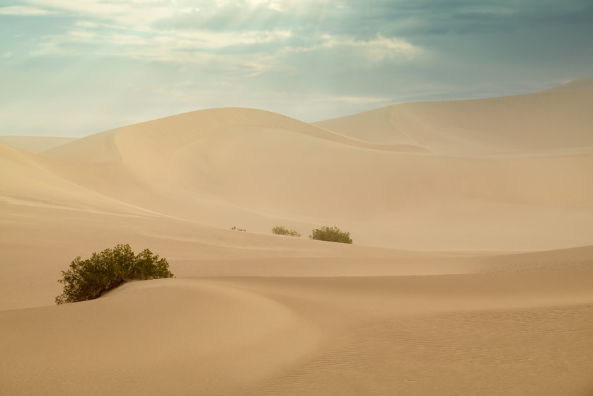 Sand Dunes 6
