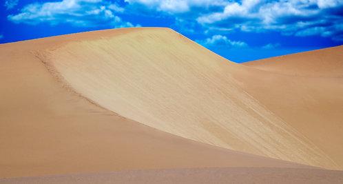 Mesquite Sand Dunes 3