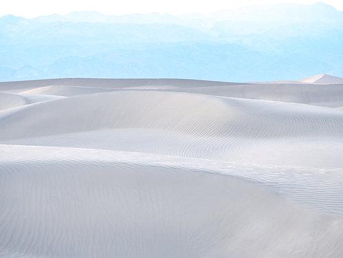Mesquite Sand Dunes 5