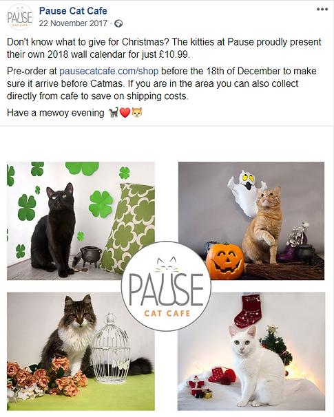 Cat calender FB post.PNG