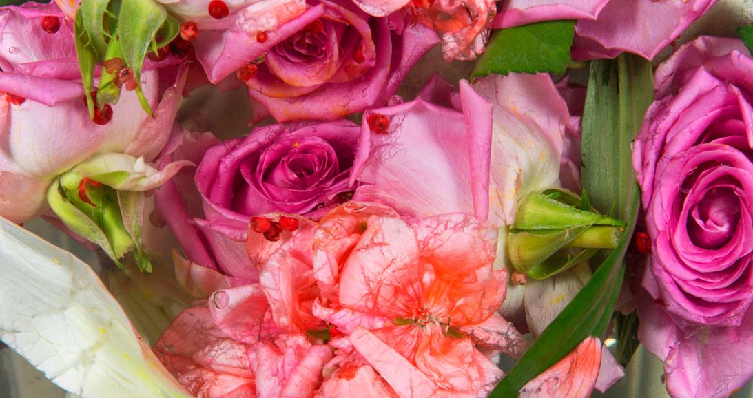 Pink peppercorn.jpg