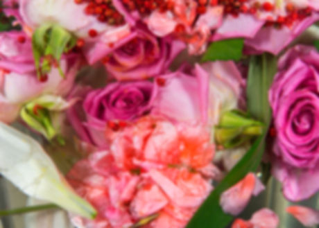 Commercial photography Worthing still life flower images