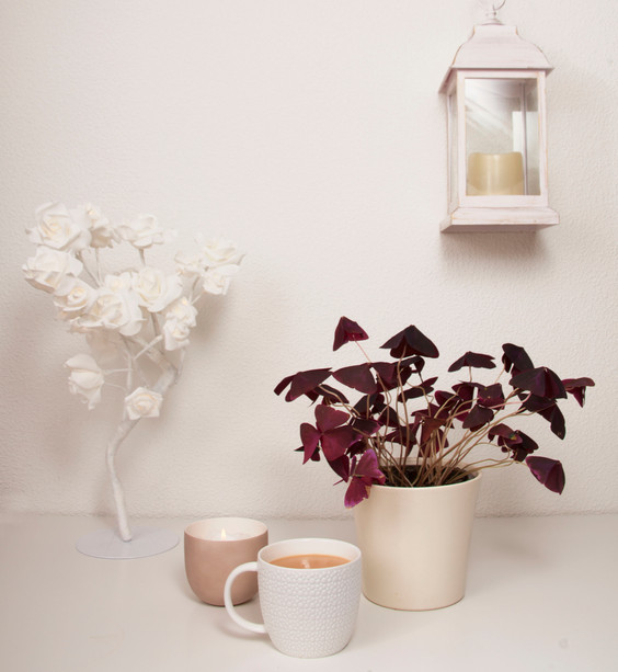 Styled by me  Homeware - The Range