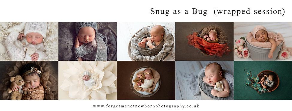 Snug as a bug newborn session