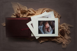forget me not newborn photography silver