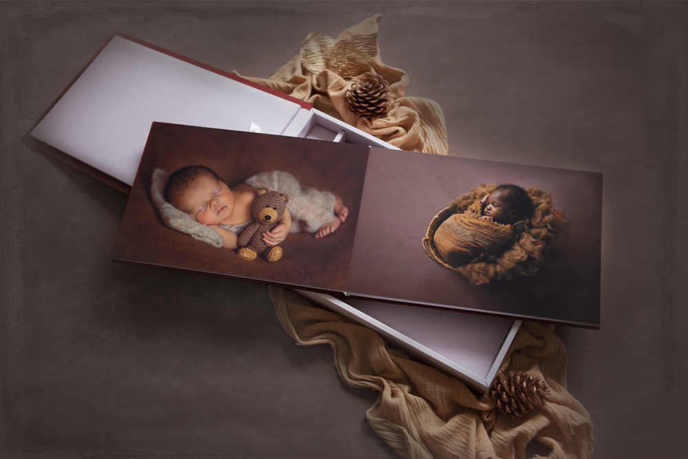 forget me not newborn photography album