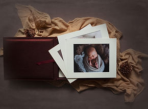 snug as a bug forget me not newborn photography