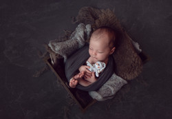 in home newborn photo session manchester