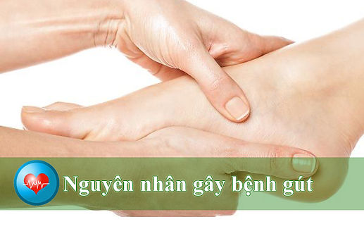 thong-tin-ve-gout-nguyen-nhan