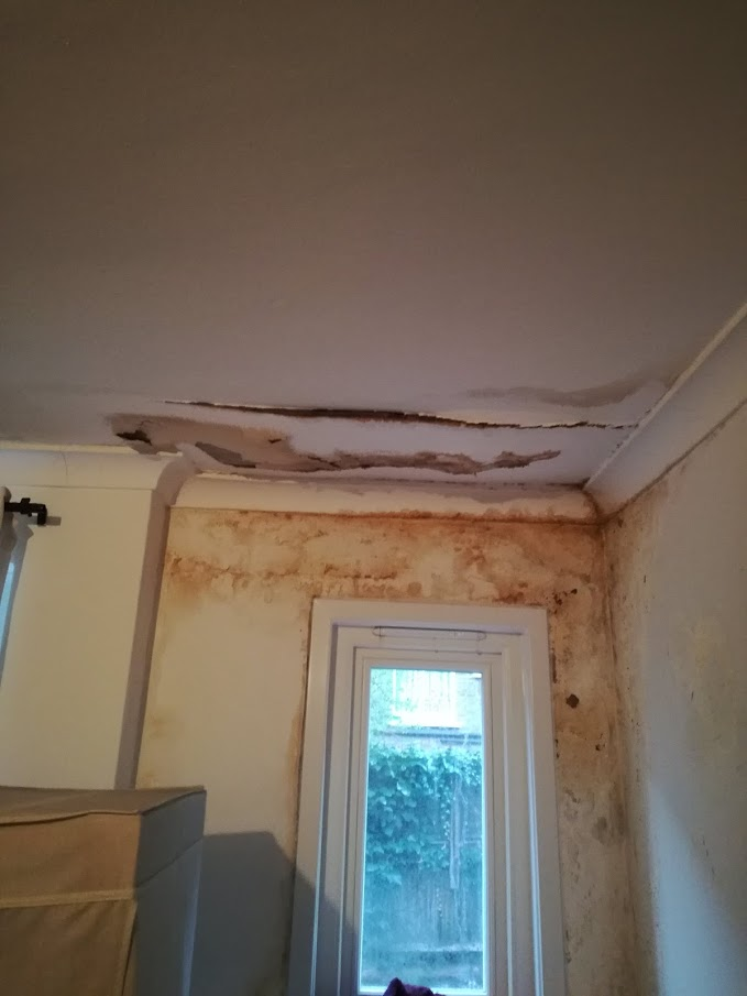 Damp on internal wall