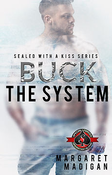 Buck the System cover hr.jpg
