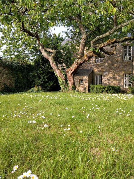 Manoir de Penn Lann Cerisier Piscine Pai