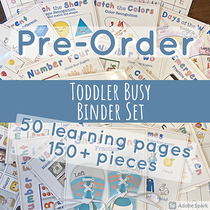 Pre-Order Toddler Busy Binder Set (ages 1-4) *price includes shipping*