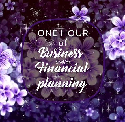 1 Hour of Business and/or Financial planning
