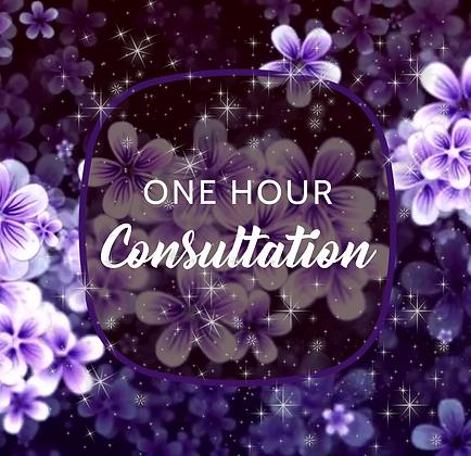 1 Hour Consultation