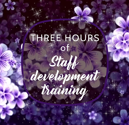 3 Hours of Staff development training