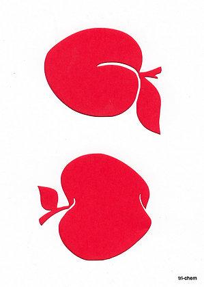 Apfel Marille