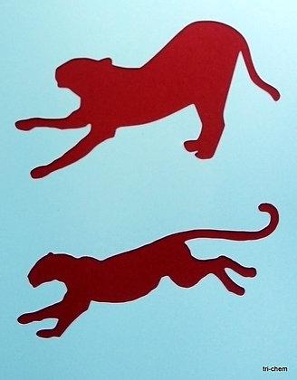 Afrika Panther