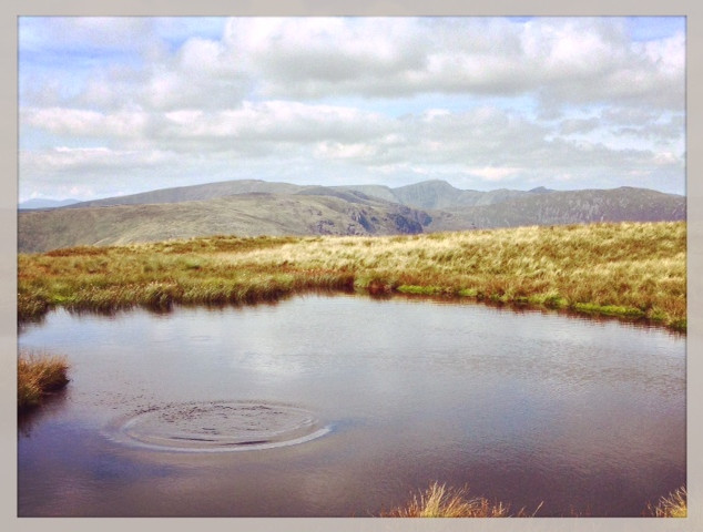 A small tarn on Red Screes looking towards the Helvellyn range.