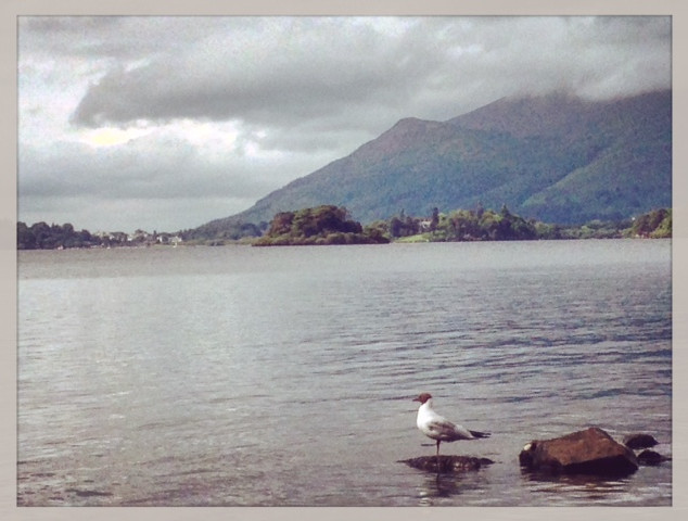 Derwentwater with Dodds Wood and Skiddaw in the background.