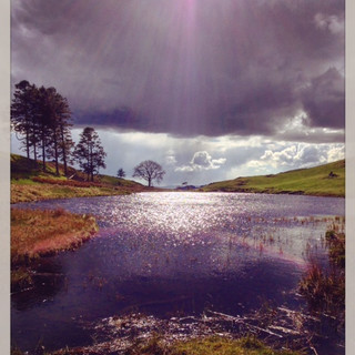 School Knott tarn. School Knott is an easy walk just south of Windermere and close to Ings